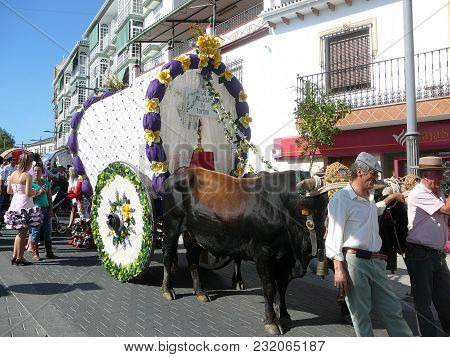 Alora, Spain - September 11, 2011: Bull Pulling Old Traditional Cart At Local Fiesta In Andalusia