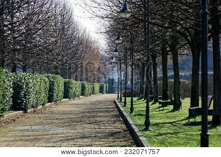 Footpath In Public Park, Tranquility Scene, Idyllic Background.