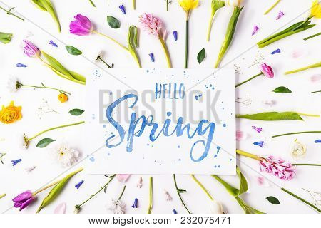Hello Spring Phrase And Colorful Flowers On A White Background. Studio Shot. Flat Lay.