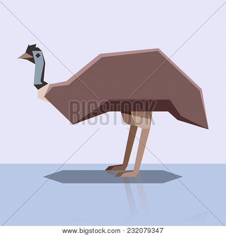 Vector Image Of The Flat Design Emu