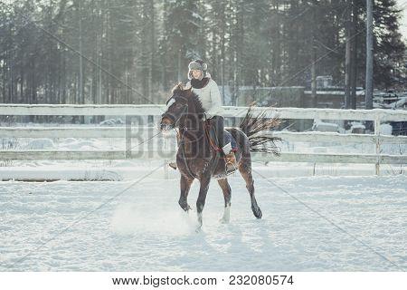 Winter Teenage Girl Jump Horse Ride Jumping