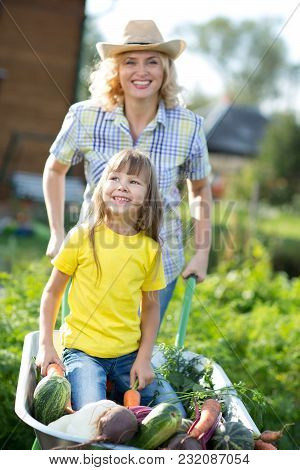 Kid Girl And Her Mother In Domestic Garden. Happy Child And Mom Push The Wheelbarrow With Harvest. H