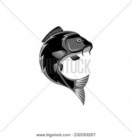 Carp Logo, Creative Pond Fish Template Logo, Round Emblem For A Fishing Store