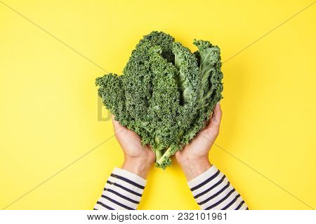 Woman Hand Holding A Bunch Of Kale Leaves Over Yellow Background.