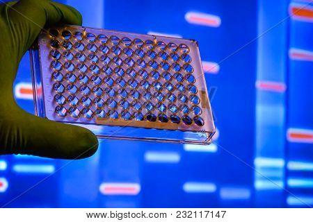 Laboratory Dna Testing.