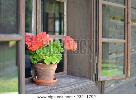 Flowerpot With Geraniums In The Window Of Historic Wooden Building