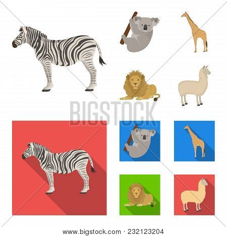 African Zebra, Animal Koala, Giraffe, Wild Predator, Lion. Wild Animals Set Collection Icons In Cart