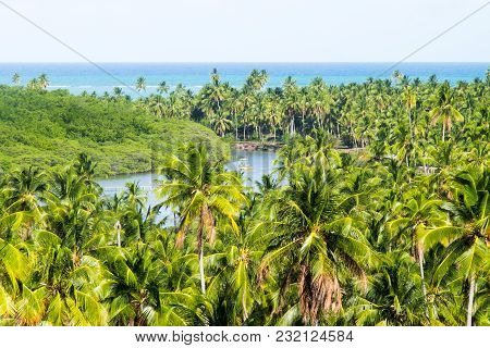 Beautiful Day In Sao Miguel Dos Milagres, Alagoas, Brazil