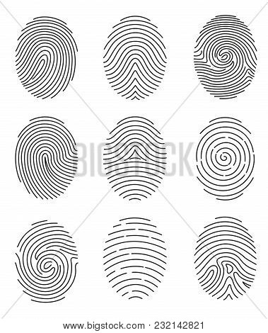 Vector Illustration Set Of Different Shape Fingerprint In Line Style On White Background