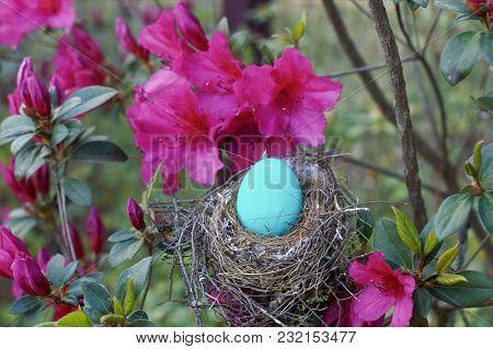 Horizontal Blue Egg In Bird Nest With Pink Azaleas