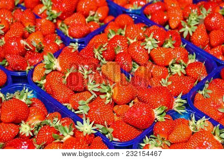 Red Ripe Strawberries In Plastic Boxes For Sale