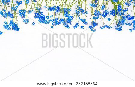 Rustic Frame Of Many Forget-me-not Flowers