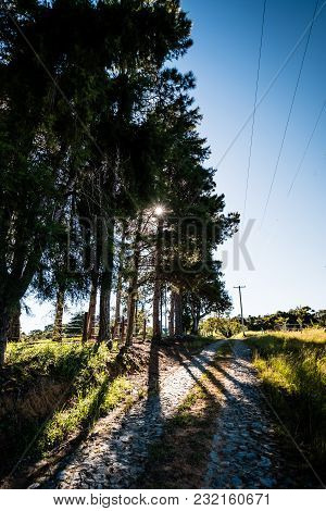 Downhill Rocky Pathway Leading To Wooden Gate, Forest In Background. Grass Sorroundings. Golden Sunl