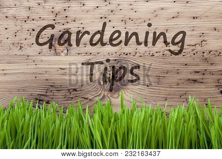 English Text Gardening Tips. Spring Season Greeting Card. Bright Aged Wooden Background With Gras.
