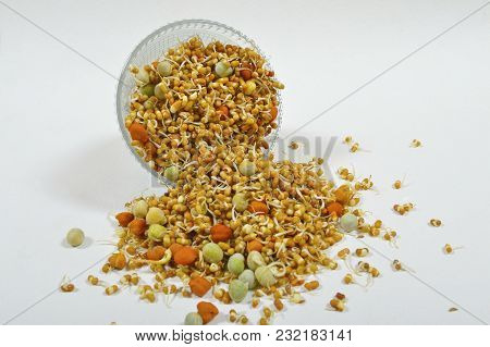 Close View Of A Bowl Of Mixed Sprouted Pulses On Isolated Background