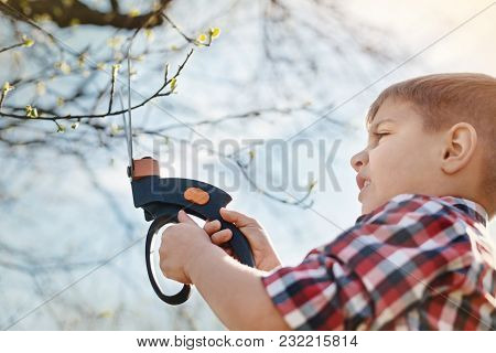 My Hobby. Low Angle Of A Nice Little Boy Pruning The Tree While Being Invoved In The Gardening