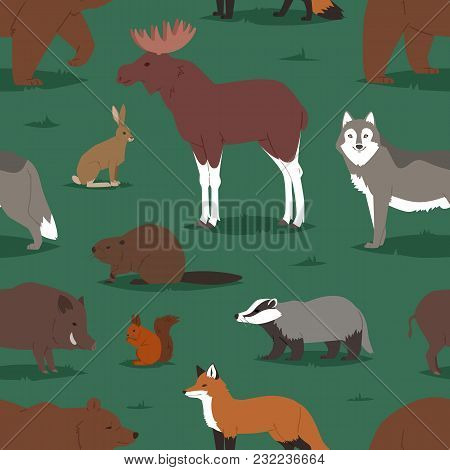 Forest Animals Vector Cartoon Animalistic Characters Bear Fox And Wild Wolf Or Boar In Woodland Illu