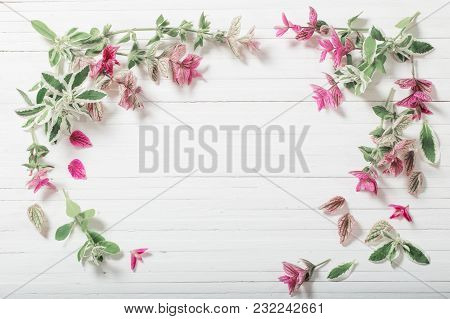 The Sage Decorative On White Wooden Background
