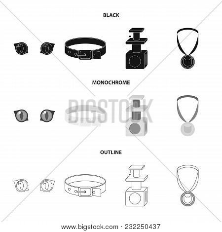 Cat Eyes, A Collar, A House For A Cat, A Medal On A Ribbon.cat Set Collection Icons In Black, Monoch