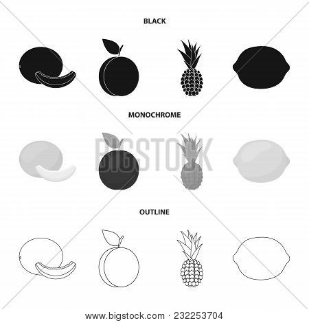 Melon, Plum, Pineapple, Lemon.fruits Set Collection Icons In Black, Monochrome, Outline Style Vector