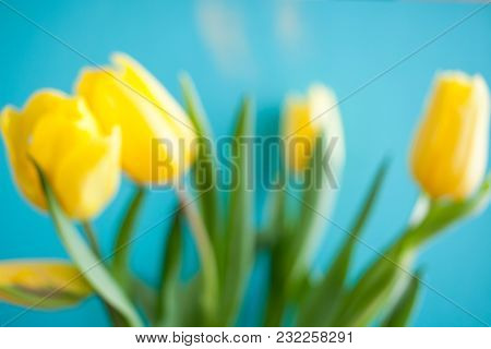 Blurred Floral Background Of  Yellow Tulips On Turquoise Background.