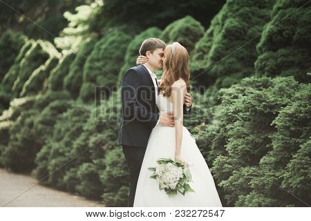 Beautiful Romantic Wedding Couple Of Newlyweds Hugging In Park On Sunset.