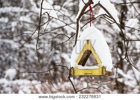 Empty Bird Wooden Feeder In Winter Forest