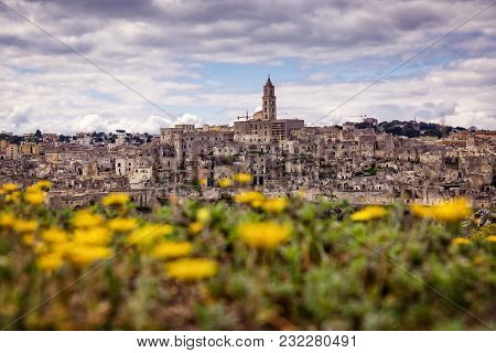Panorama Of Matera In Italy With Summer Flowers In The Foreground And The Ancient City In The Backgr