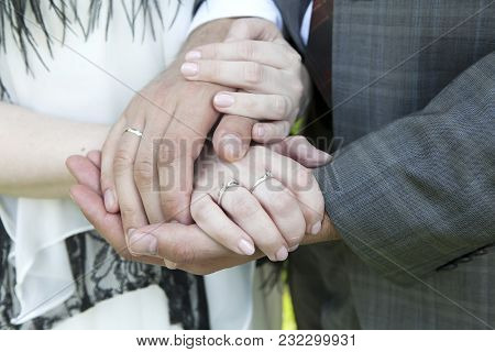 Closeup Of Hands Of Bride And Groom With Wedding Rings