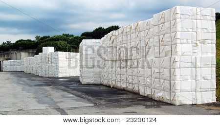 Paper And Pulp Mill - Cellulose