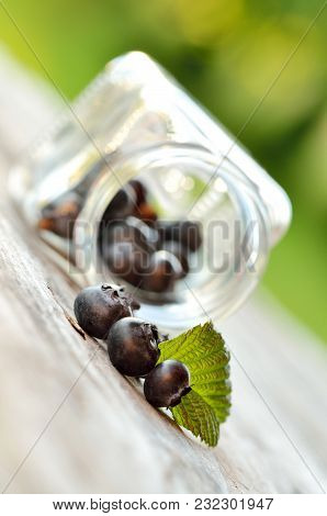 Jar Of Spilled Blueberries With Green Leaf On Wooden Table In Garden