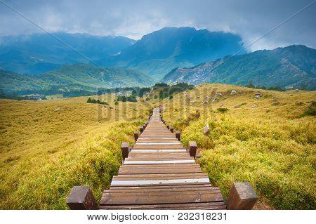 Hiking Paths At Beautiful Hehuan Mountain, Taiwan