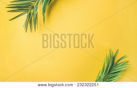 Flat-lay Of Green Palm Branches Over Yellow Background, Top View, Copy Space, Wide Composition. Summ