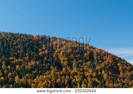 Sky Divided By A Hill Of Mixed Forest In Autumn Colors