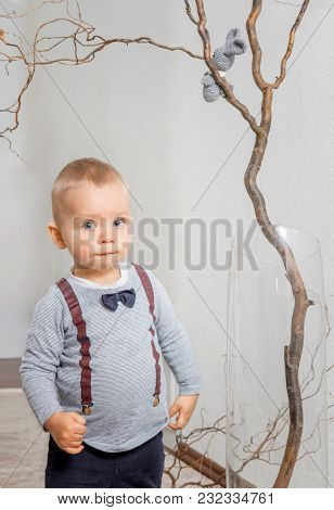 Portrait of a cunning boy in a children's room