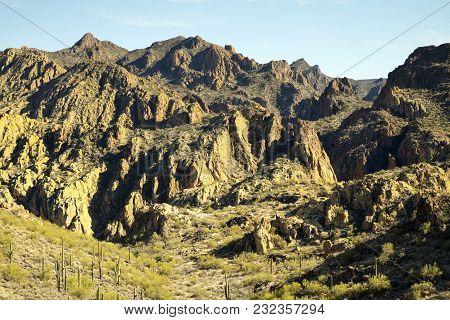 View Of The Sonoran Desert Near Phoenix, Arizona