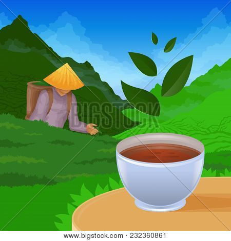 Colored Illustration Depicting Tea Pickers On The Background Of Nature And Tea Plantations In The Fo