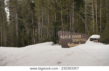 Fresh Snow Covering The Boundary Marker Sign Entering Rogue River-siskiyou National Forest Oregon