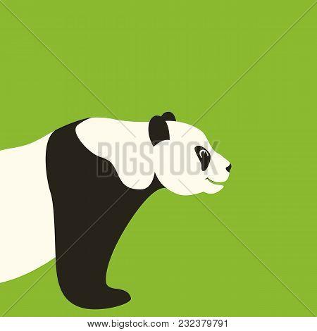 Panda  Face Vector Illustration Flat Style Profile Side