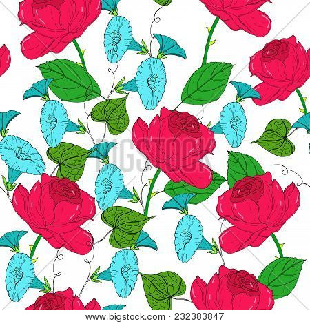 Vector Colored Pattern With Blue Bindweed And Red Roses On White Background. Vintage Flowers.