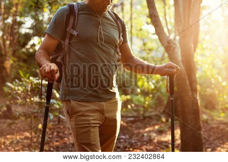 Man trekking into the forest