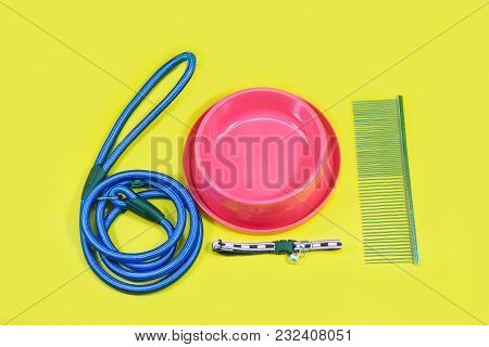 Pet Accessories Concept:  Leash, Bowl, Collars And Comb For Dog Or Cat On Yellow Background.