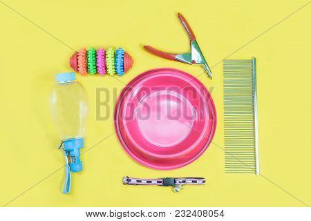 Pet Accessories Concept:  Bowl, Toys, Collars, Comb, Bottle Of Water And Nail Scissors On Yellow Bac