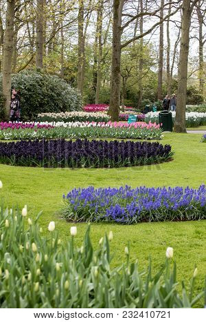 Lisse, Netherlands - April 19, 2017: Visitors At The Keukenhof Garden In Lisse, Holland, Netherlands