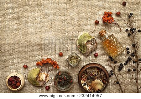 Wild Dry Rowan Berry Medicinal Tincture And Medical Shelf Fungus Betulinus On Sackcloth Background W