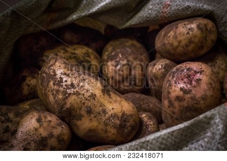 Pile Of Potatoes Lying With A Potato Bag In The Background