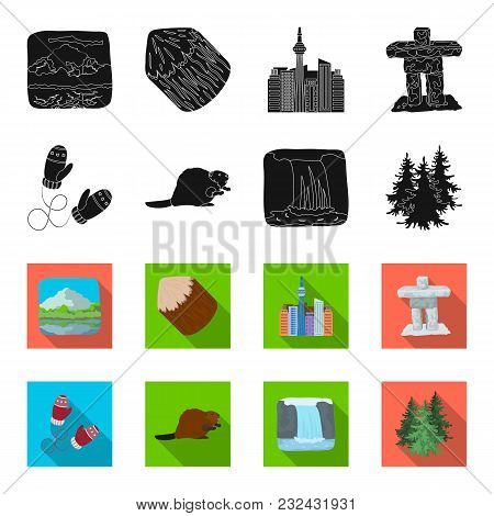 Canadian Fir, Beaver And Other Symbols Of Canada.canada Set Collection Icons In Black, Flet Style Ve