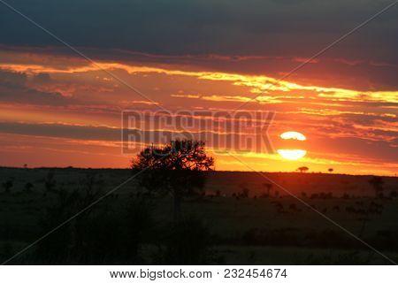 Sunset In Heart Of African Savanna In Masai Mara Kenya.