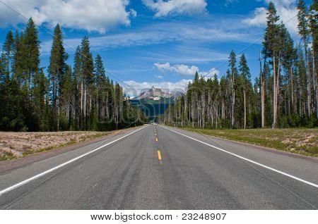 Road to Mt. Thielsen