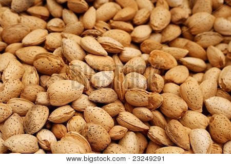 almonds in bulk